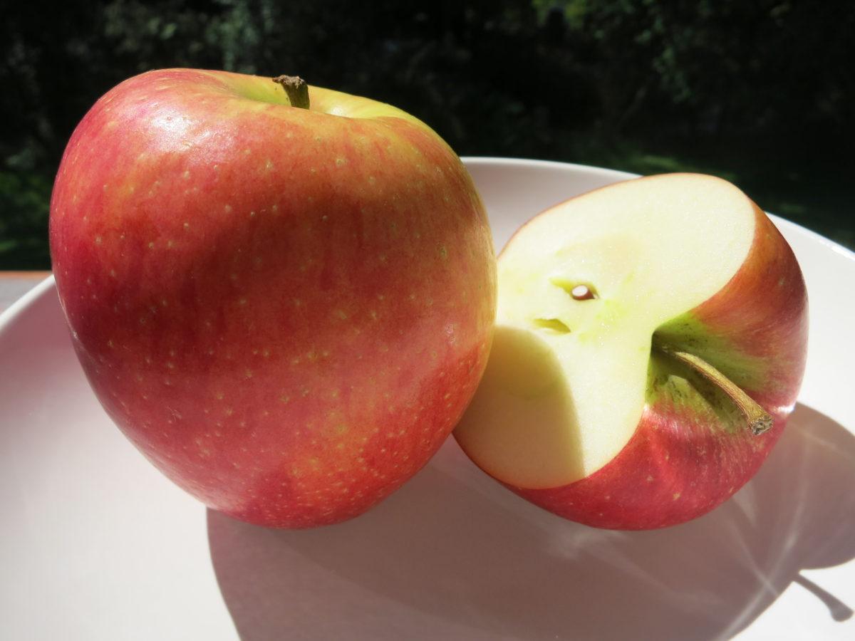 Apfel Streusel Torte